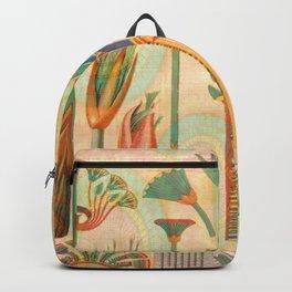 Vintage Egyptian Backpack