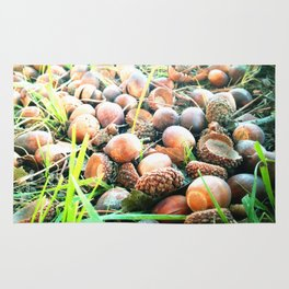 Don't go nuts! Rug