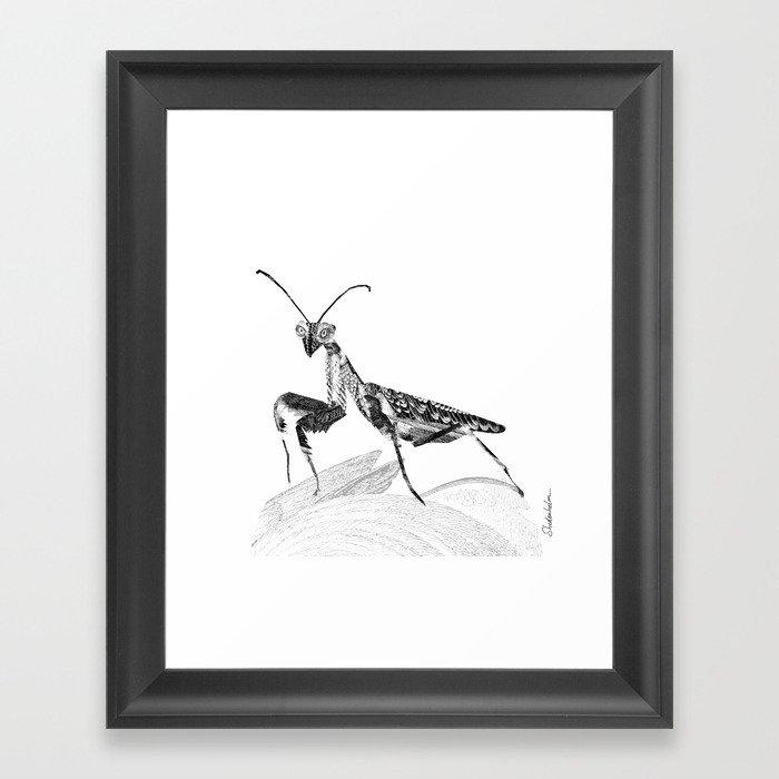 Praying Mantis Framed Art Print