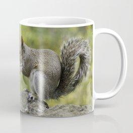 SQUIRREL EATING A NUT Coffee Mug