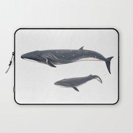 Sei whale (Balaenoptera borealis) Laptop Sleeve