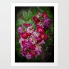 A Little English Garden Art Print