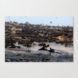 Three Penuins Canvas Print