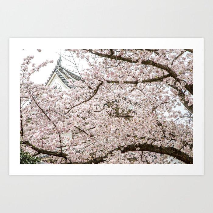 Cherry Blossoms in Osaka Japan Art Print