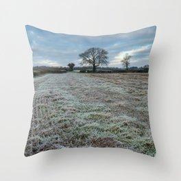 Frosty Fields Throw Pillow