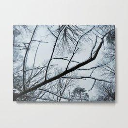Little Ice Tree Metal Print