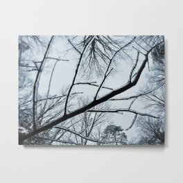 Little Ice Tree Metal Print