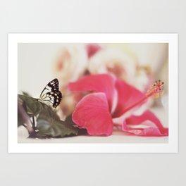 Black Butterfly Pink Flower Art Print