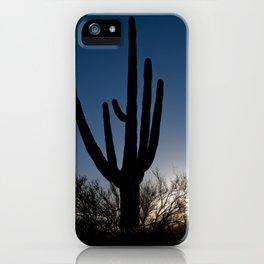 Sunset Cacti 3 iPhone Case