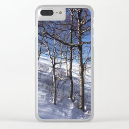 Sunny on the Slopes Clear iPhone Case