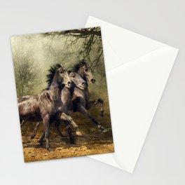 Cavalli Stationery Cards