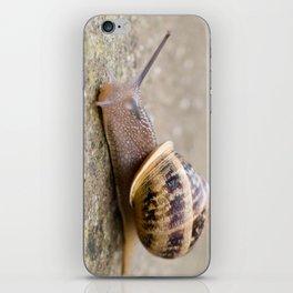 sn@il iPhone Skin