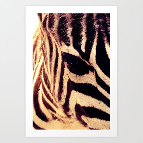 Zazu the Zebra Art Print