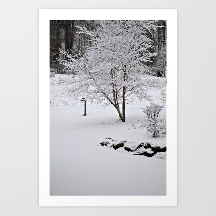 Virgin Snow Art Print
