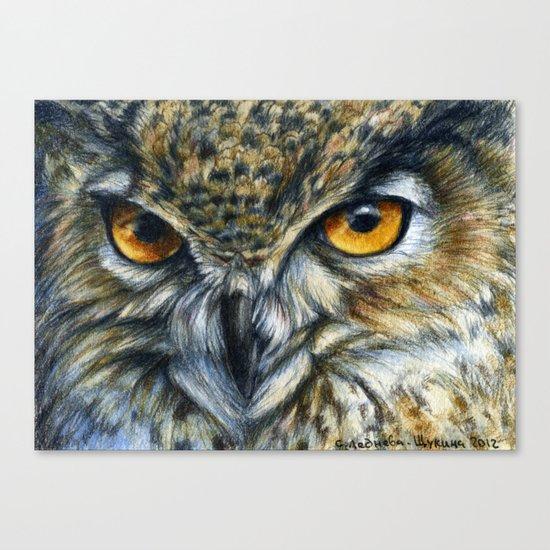 Owl 811 Canvas Print