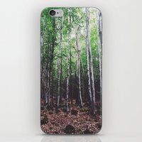 uncharted iPhone & iPod Skins featuring Uncharted Woods  by Oscar Goodwin