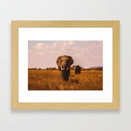 Elephant Safari (Color) Framed Art Print