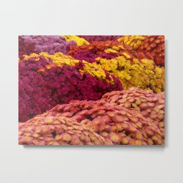 Fall Mums Metal Print