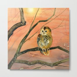 Colorful Owl Art Metal Print