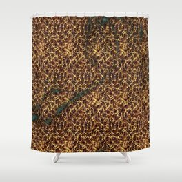 Abstracted Shower Curtain