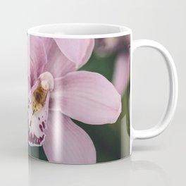 Orchid cascase Coffee Mug