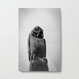 wooden owl Metal Print