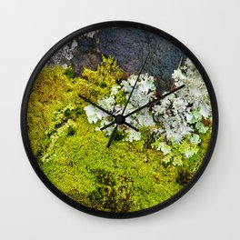 Tree Bark with Lichen#8 Wall Clock