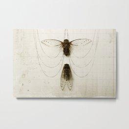 Cicada Pair Metal Print