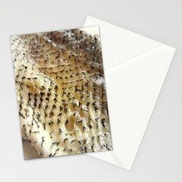 Fish Skin Stationery Cards