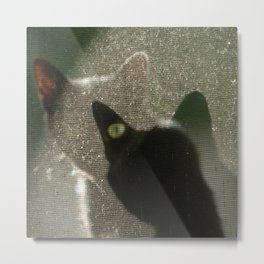 Cat Picatsso Metal Print