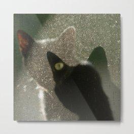 Cat Picatsso Metal Print