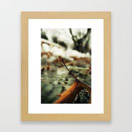 Frail Little Loner Framed Art Print