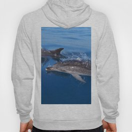 Mother and baby spotted dolphin Hoody