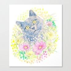 Dreamy Chartreux Cat Canvas Print