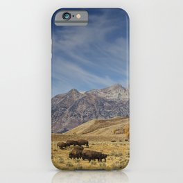 Bison The National Mammal iPhone Case