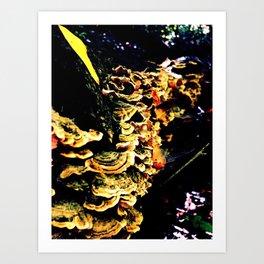 Reishi Art Print