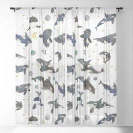 Orca pattern Sheer Curtain