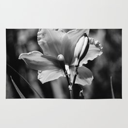 Black-and-White Daylily Rug