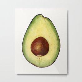 Vintage avocado illustration Metal Print