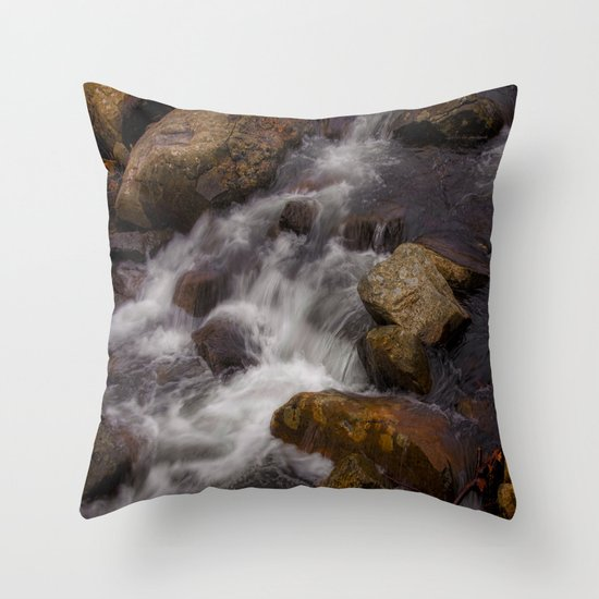 The Babbling Brooke Throw Pillow