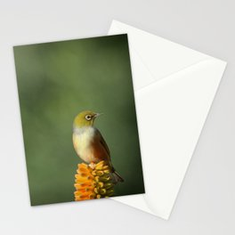 Silvereye Queen Stationery Cards