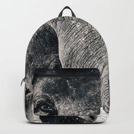Trunk Backpack
