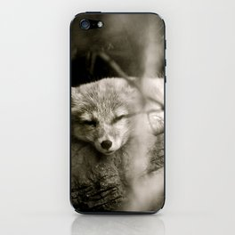 Nature's Finest Peace iPhone Skin