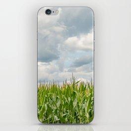 Corn field iPhone Skin