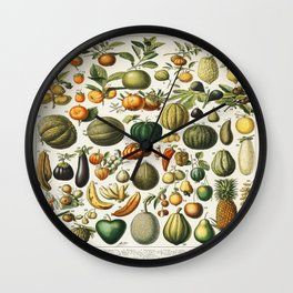 Fruits Vintage Scientific Illustration French Language Encyclopedia Lithographs Educational Wall Clock