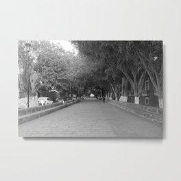 Calzada de Fray Antonio de San Miguel Metal Print