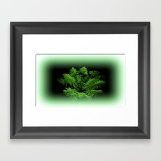 Fern from 30 metres Above! Framed Art Print