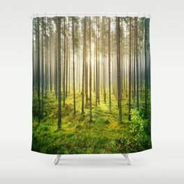 Fog & Sunbeams In The Forest Shower Curtain