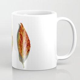 Fall Forsythia Leaves Coffee Mug