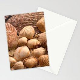 shells 2 Stationery Cards